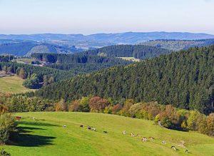Landschaft im Sauerland in Nordrhein-Westfalen