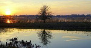 Landschaft mit Sonnenuntergang in Schleswig-Holstein